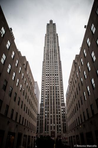 newyork-2014-2729