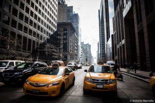 newyork-2014-2733
