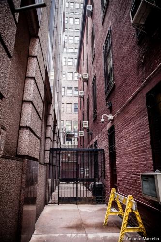 newyork-2014-2734