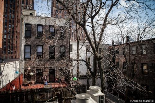 newyork-2014-3318