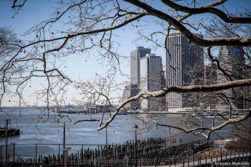 newyork-2014-3465