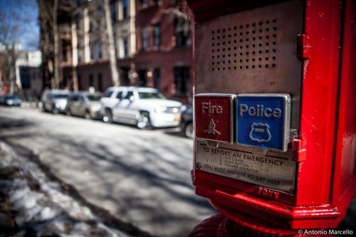 newyork-2014-3469